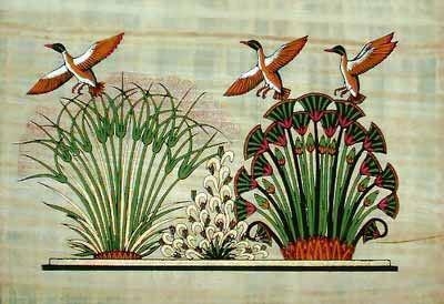 Egyptian Papyrus Paintings - Flying Duck Papyrus