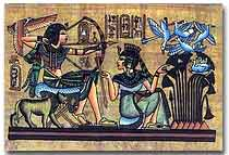 Tut Ankh Amun and Birds Catch